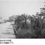 昭和40年代中頃。道路は未舗装です。-鳥取砂丘らくだや