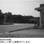 昭和40年代中頃。整備が本格的に。-鳥取砂丘らくだや