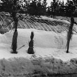 昭和40年代中頃。雪景色。-鳥取砂丘らくだや