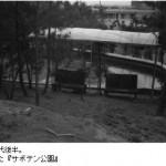 昭和40年代後半。サボテン公園。らくだや駐車場の前身です。-鳥取砂丘らくだや